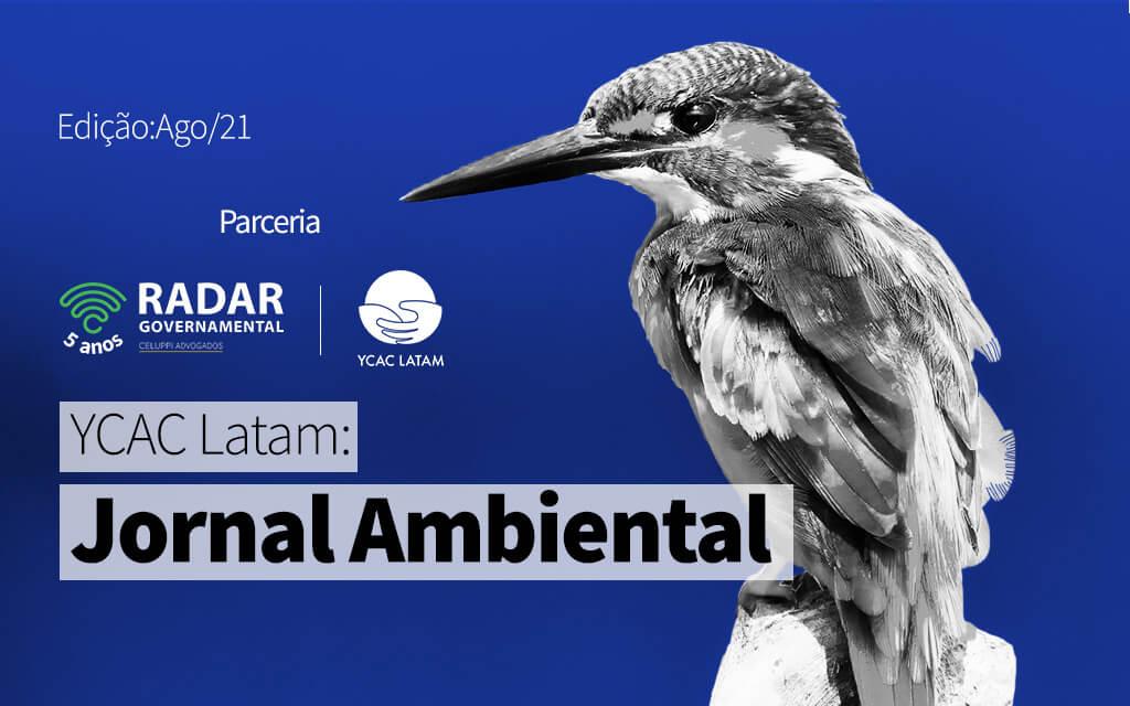 YCAC Latam: Jornal Ambiental Latino (agosto 2021)